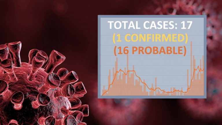 Solid Proof: COVID-19 Cases Extremely  Inflated